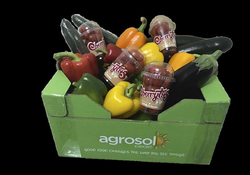caja_variada_Agrosol